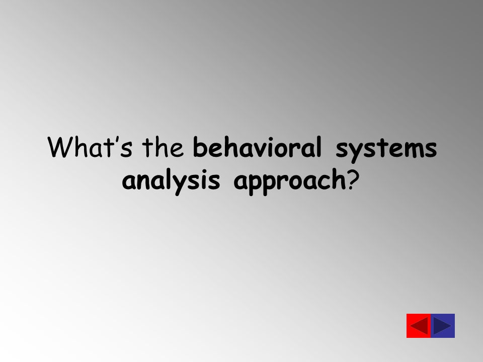 What's the behavioral systems analysis approach