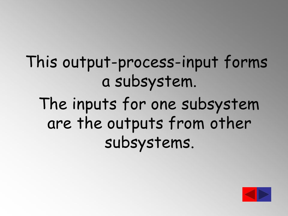 This output-process-input forms a subsystem.