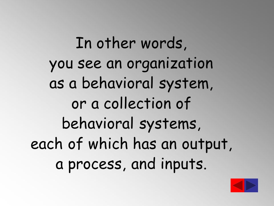 In other words, you see an organization as a behavioral system, or a collection of behavioral systems, each of which has an output, a process, and inputs.