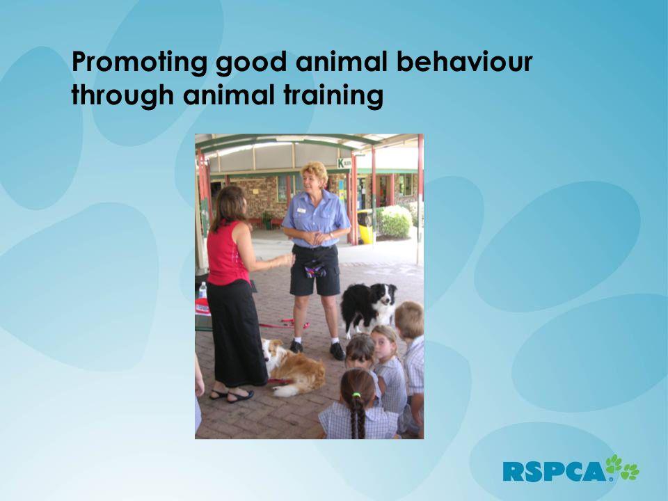 Promoting good animal behaviour through animal training