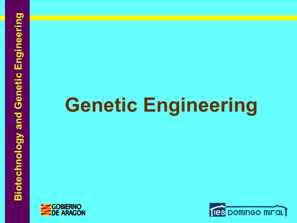 Biotechnology and Genetic Engineering Genetic Engineering: Introduction Each individual must decide for him or herself their stance on this issue, but hopefully you have come to understand that in order to do it we need enough knowledge and be fully aware that as citizens we should keep reflecting on it and asking the authorities to legislate and carefully control all this technology.