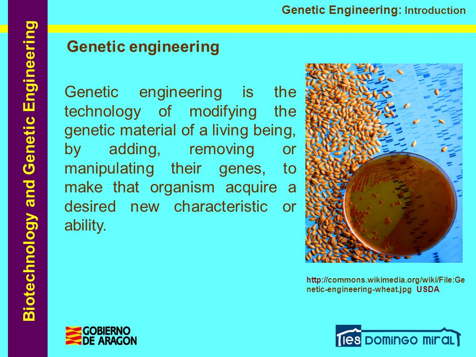 Biotechnology and Genetic Engineering Genetic Engineering: Introduction Genetic engineering Genetic engineering is the technology of modifying the gen