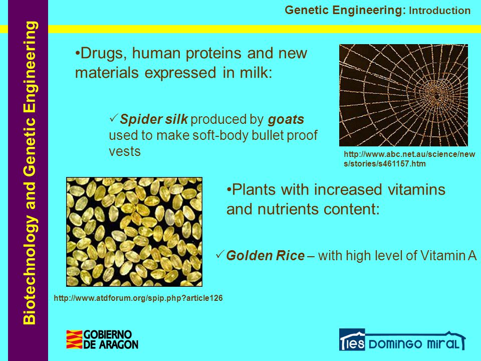 Biotechnology and Genetic Engineering Genetic Engineering: Introduction  Golden Rice – with high level of Vitamin A Plants with increased vitamins an