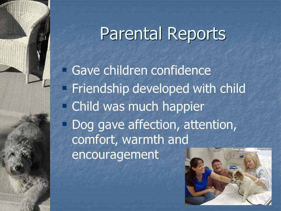 Parental Reports  Gave children confidence  Friendship developed with child  Child was much happier  Dog gave affection, attention, comfort, warmth and encouragement
