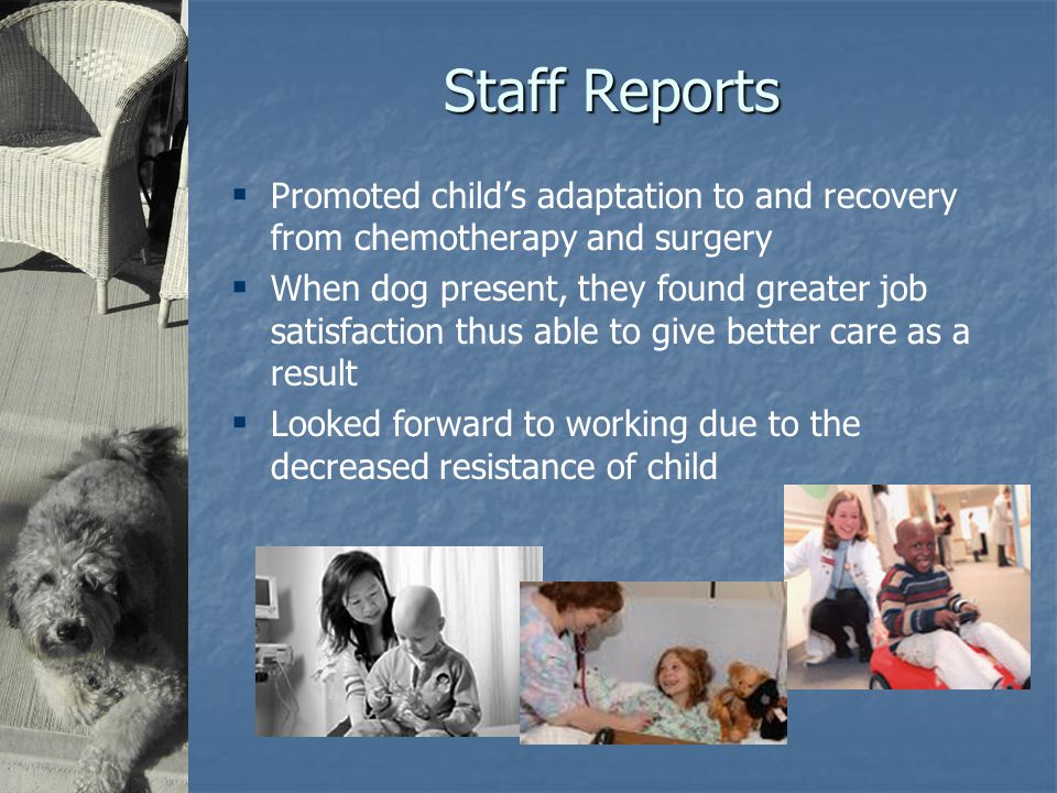 Staff Reports  Promoted child's adaptation to and recovery from chemotherapy and surgery  When dog present, they found greater job satisfaction thus able to give better care as a result  Looked forward to working due to the decreased resistance of child