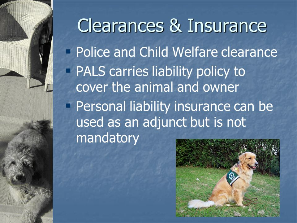 Clearances & Insurance  Police and Child Welfare clearance  PALS carries liability policy to cover the animal and owner  Personal liability insurance can be used as an adjunct but is not mandatory