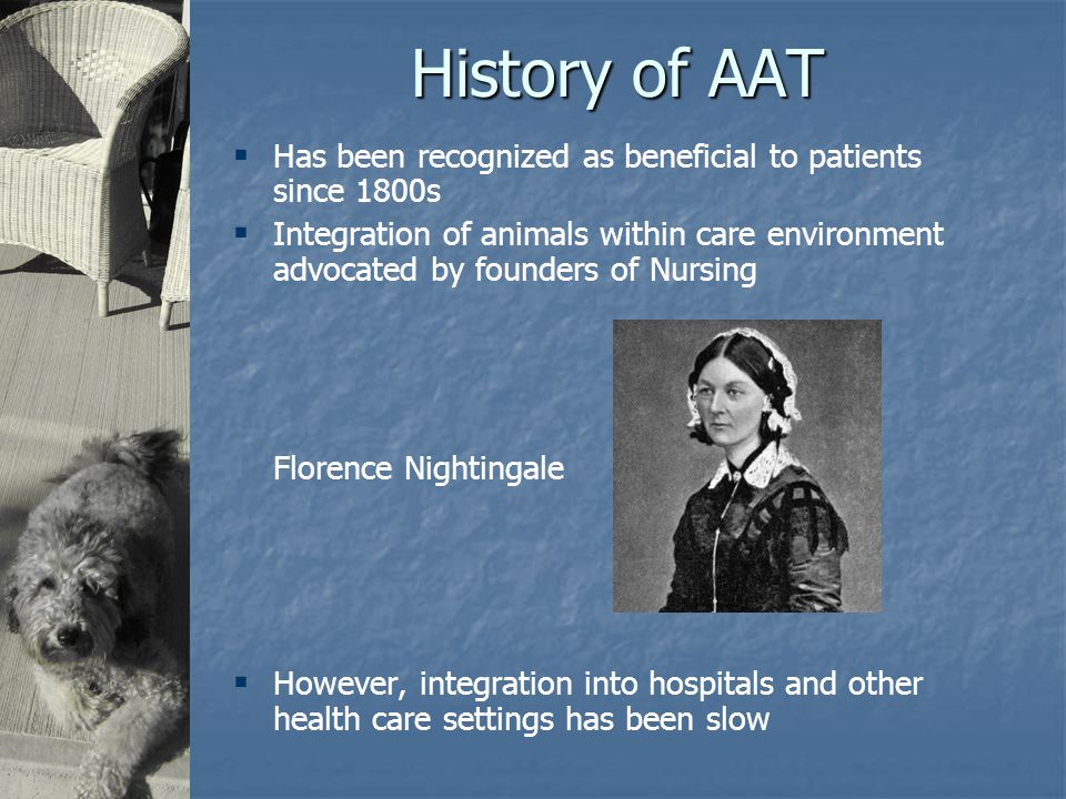 History of AAT  Has been recognized as beneficial to patients since 1800s  Integration of animals within care environment advocated by founders of Nursing Florence Nightingale  However, integration into hospitals and other health care settings has been slow