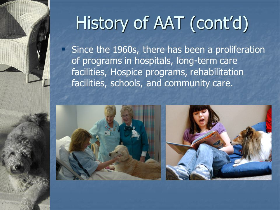 History of AAT (cont'd)  Since the 1960s, there has been a proliferation of programs in hospitals, long-term care facilities, Hospice programs, rehabilitation facilities, schools, and community care.