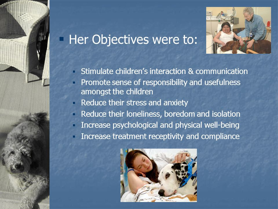 The Study  The project ran 1 year  Dogs spent time at bedside  8 hour sessions  Up to 3 times per week  A parent was also present  The parents, children and staff regularly filled out questionnaires during this time