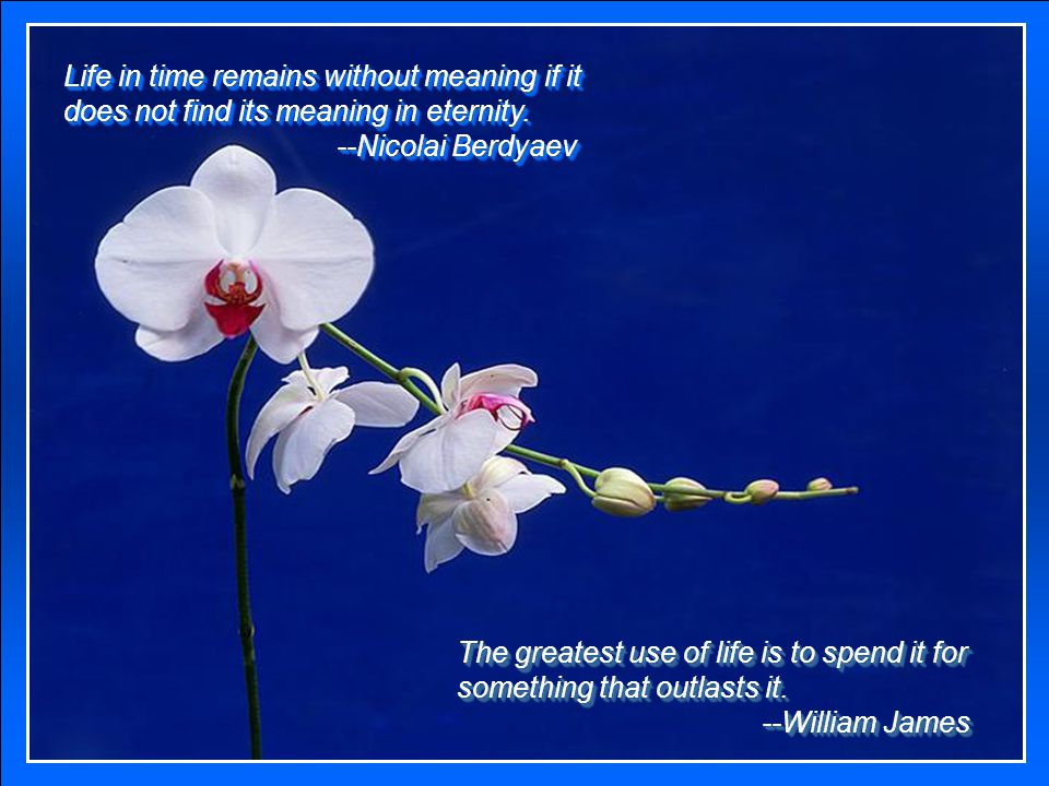 Life in time remains without meaning if it does not find its meaning in eternity.