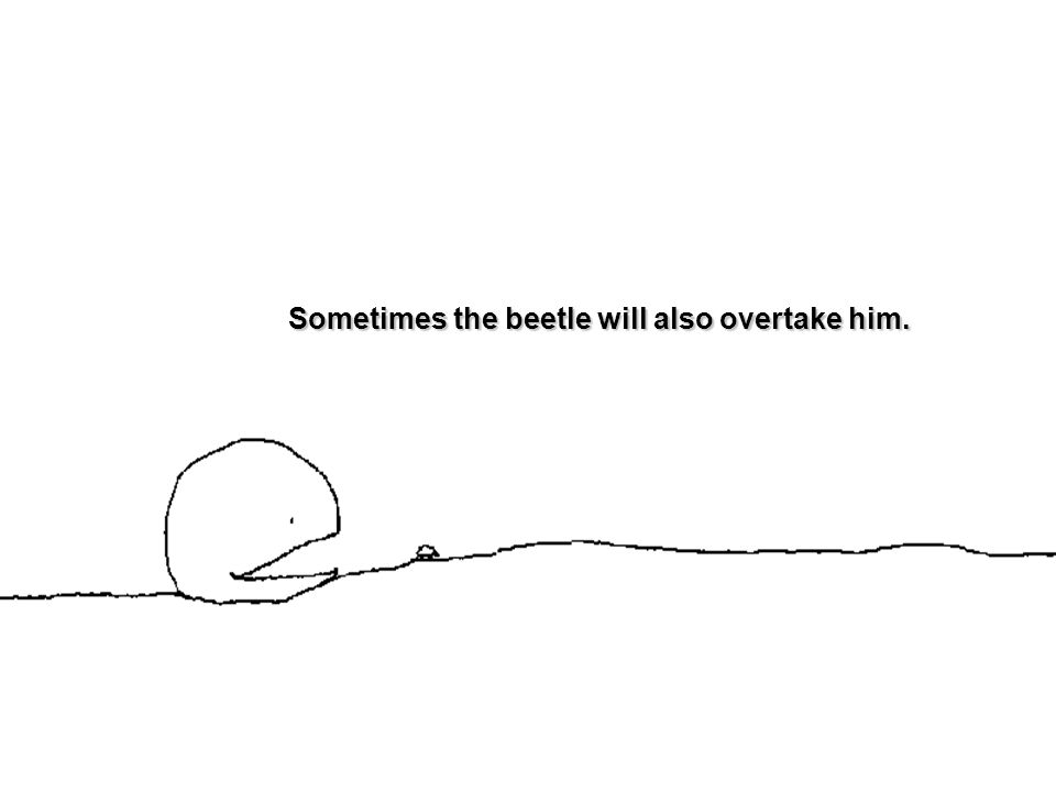 Sometimes the beetle will also overtake him.