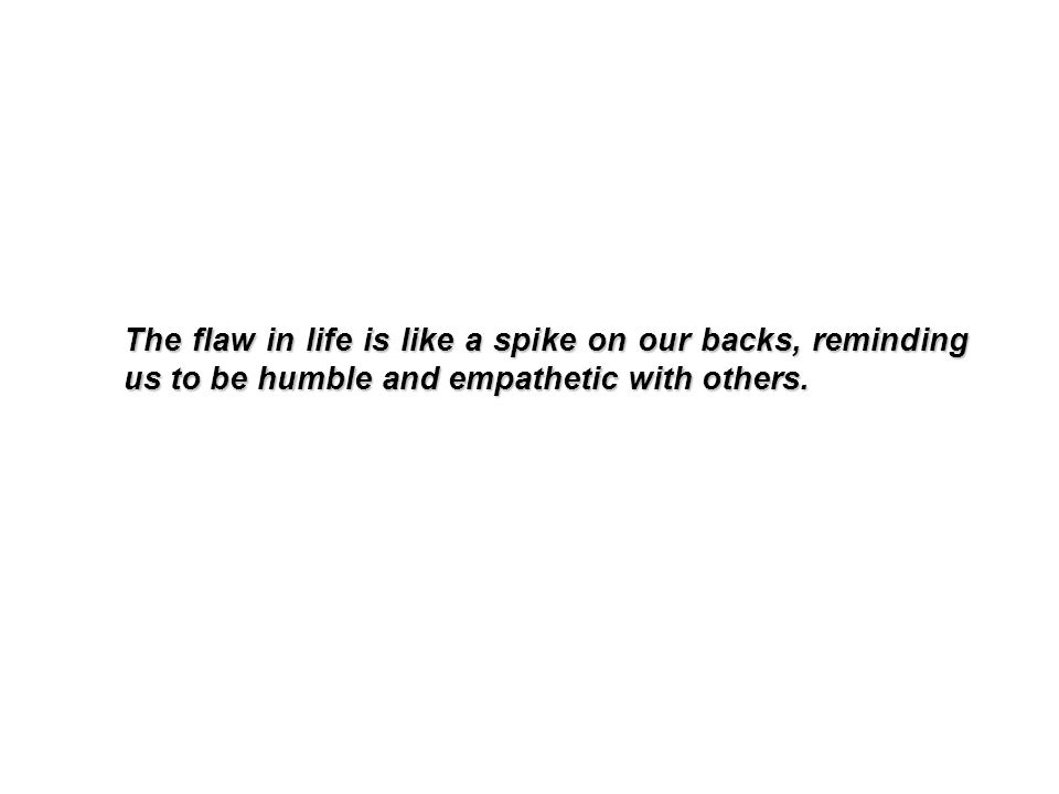 The flaw in life is like a spike on our backs, reminding us to be humble and empathetic with others.