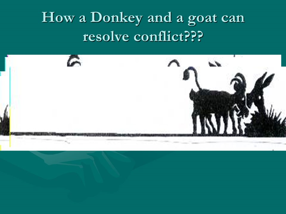 How a Donkey and a goat can resolve conflict