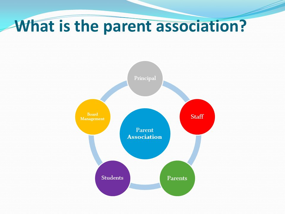 What is the parent association? Parent Association Principal StaffParents Students Board Management