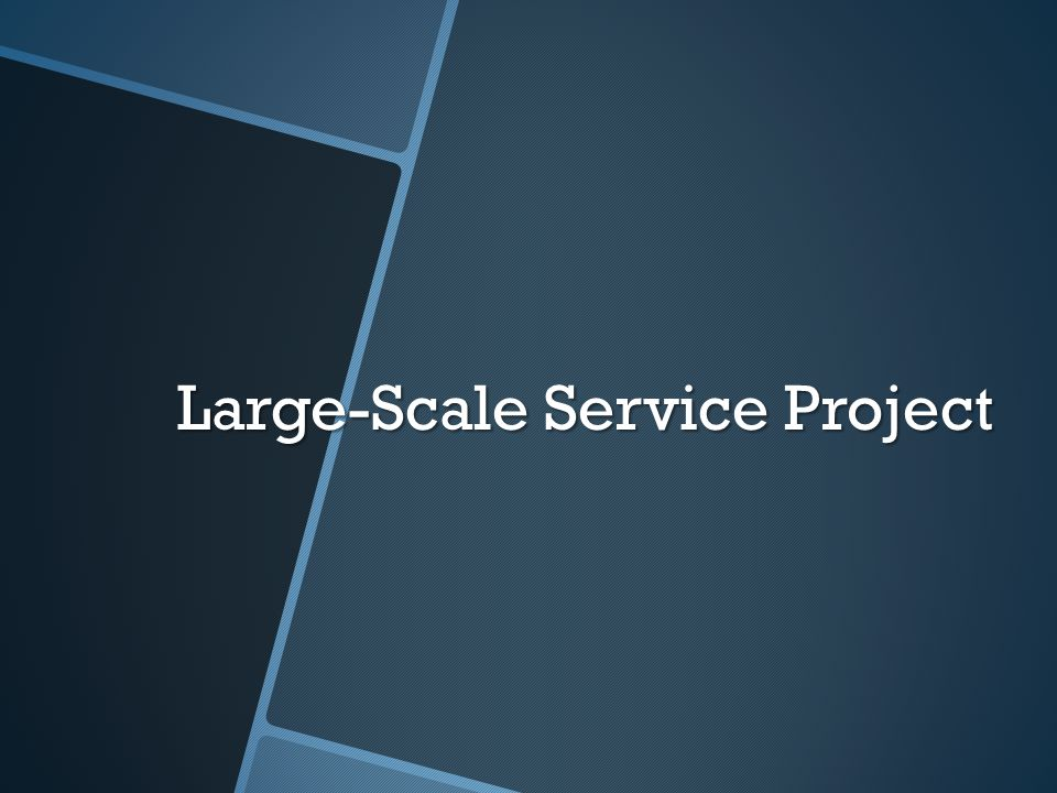 Large-Scale Service Project