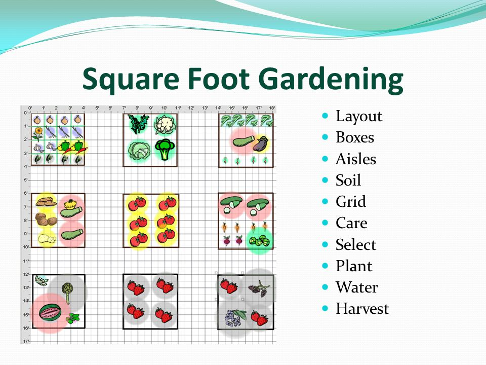 Square Foot Gardening Layout Boxes Aisles Soil Grid Care Select Plant Water Harvest