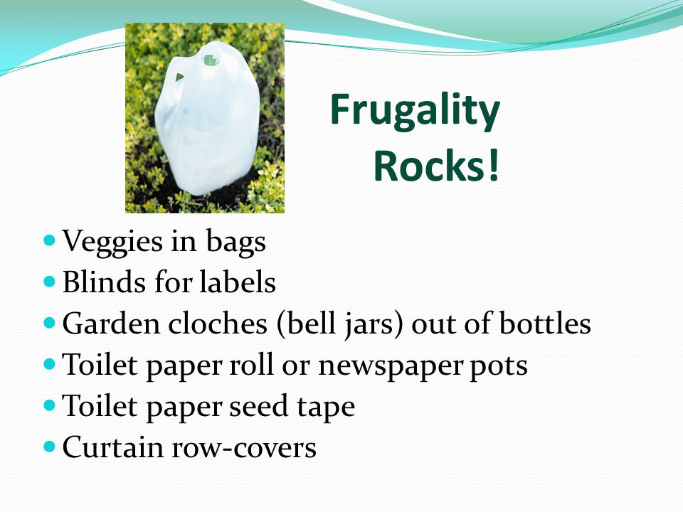 Frugality Rocks! Veggies in bags Blinds for labels Garden cloches (bell jars) out of bottles Toilet paper roll or newspaper pots Toilet paper seed tap