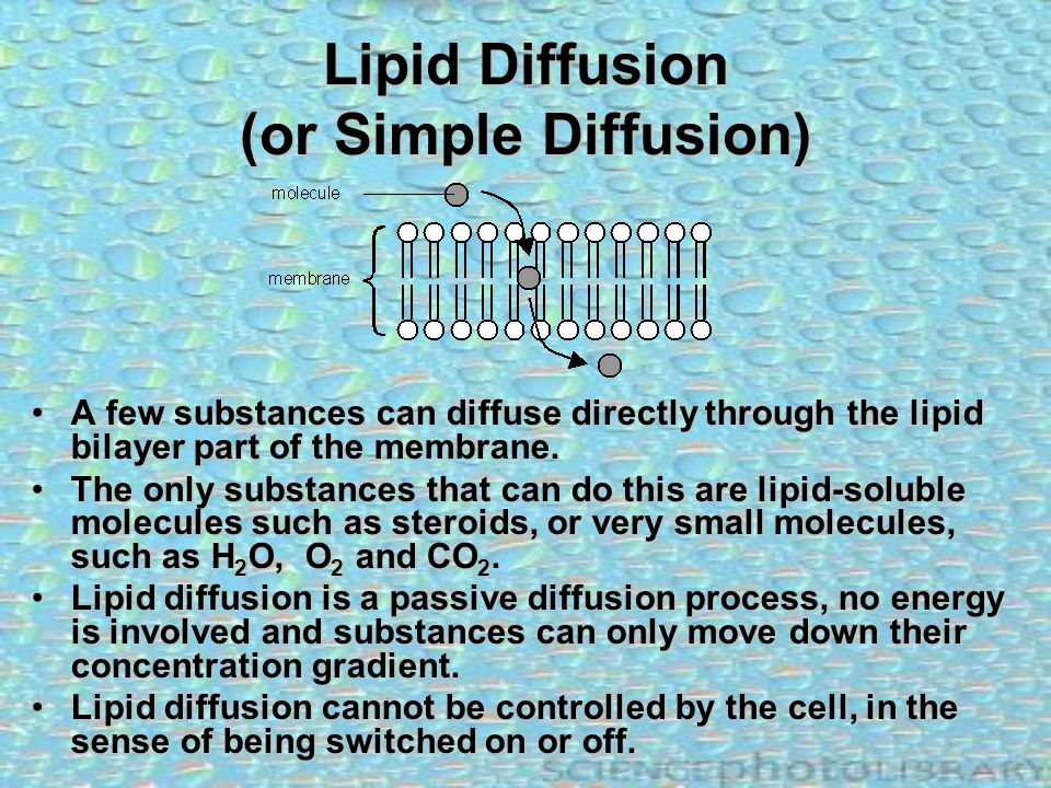 Lipid Diffusion (or Simple Diffusion) A few substances can diffuse directly through the lipid bilayer part of the membrane.A few substances can diffus