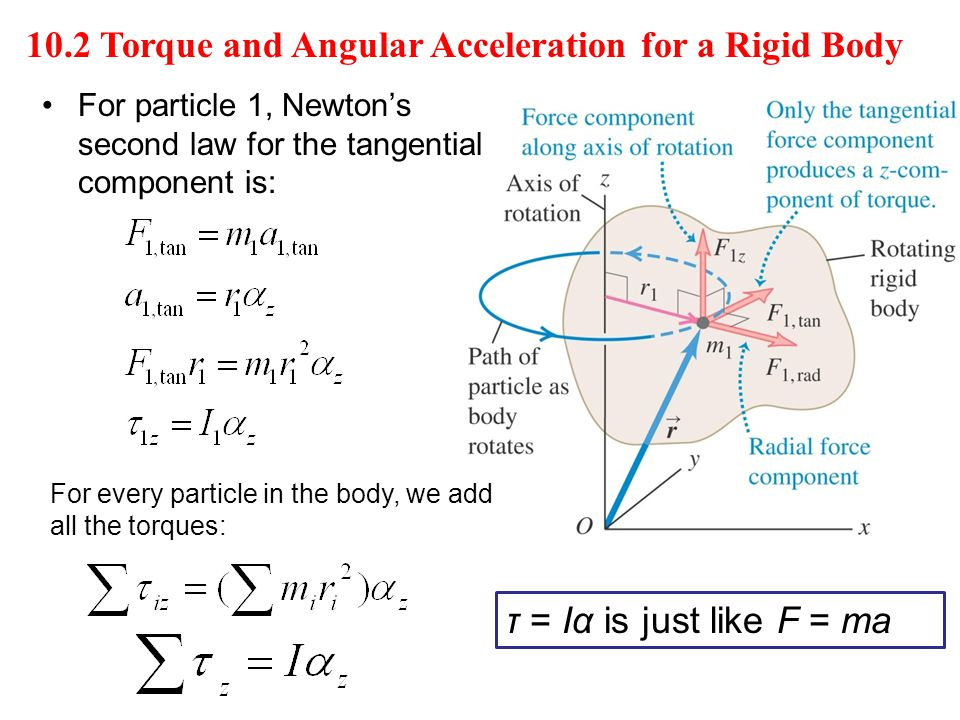 10.2 Torque and Angular Acceleration for a Rigid Body τ = Iα is just like F = ma For particle 1, Newton's second law for the tangential component is: