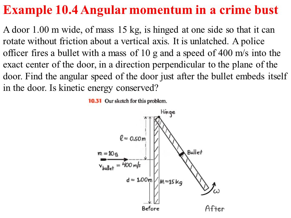 A door 1.00 m wide, of mass 15 kg, is hinged at one side so that it can rotate without friction about a vertical axis. It is unlatched. A police offic