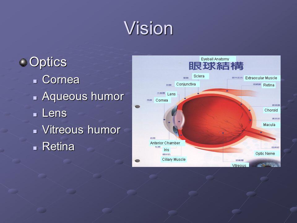 Vision Optics Cornea Cornea Aqueous humor Aqueous humor Lens Lens Vitreous humor Vitreous humor Retina Retina