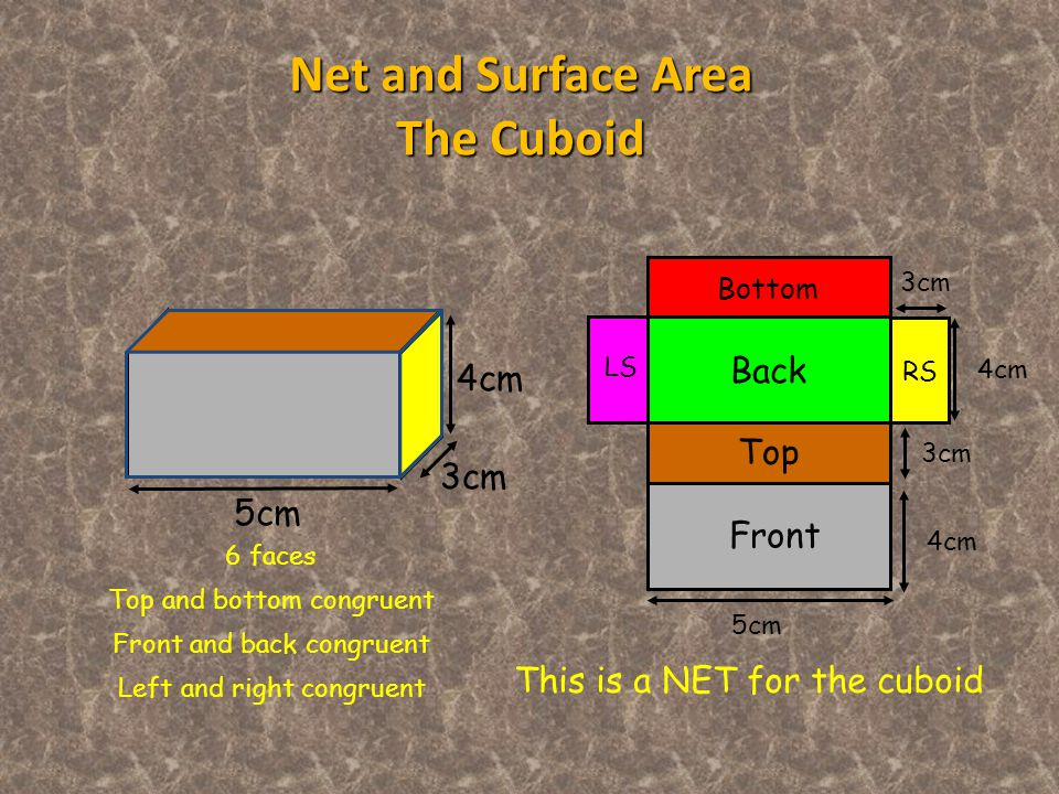 Bottom Top LS Back RS Front This is a NET for the cuboid Net and Surface Area The Cuboid 6 faces Top and bottom congruent Front and back congruent Left and right congruent 5cm 4cm 3cm 5cm 3cm 4cm 3cm 4cm