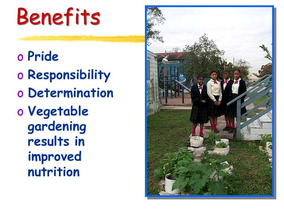 Benefits oPride oResponsibility oDetermination oVegetable gardening results in improved nutrition