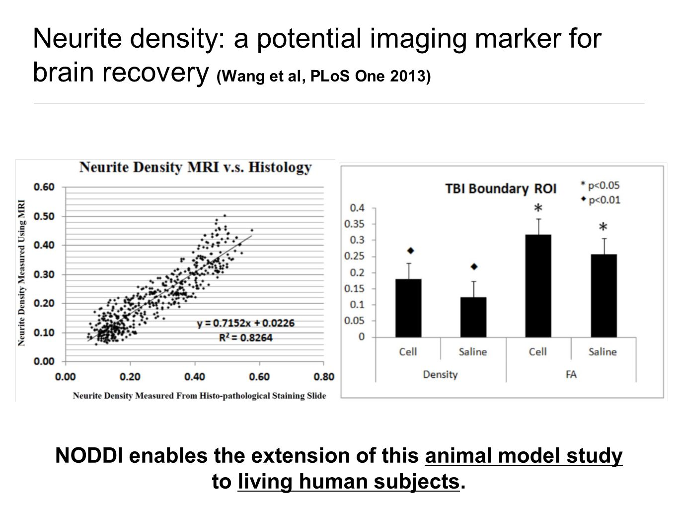 Neurite density: a potential imaging marker for brain recovery (Wang et al, PLoS One 2013) NODDI enables the extension of this animal model study to living human subjects.