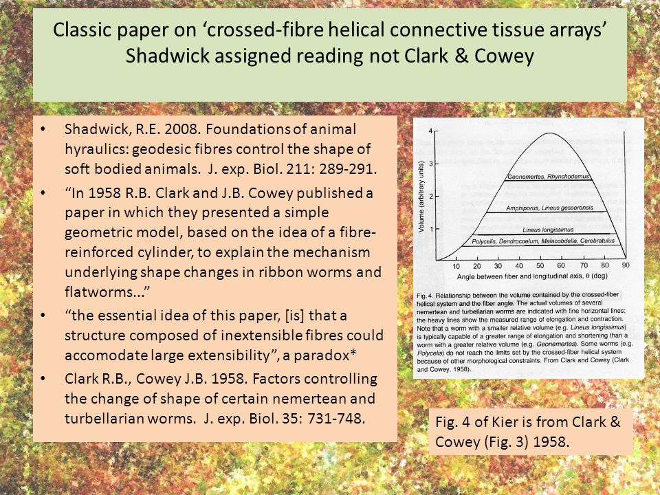 Classic paper on 'crossed-fibre helical connective tissue arrays' Shadwick assigned reading not Clark & Cowey Shadwick, R.E.