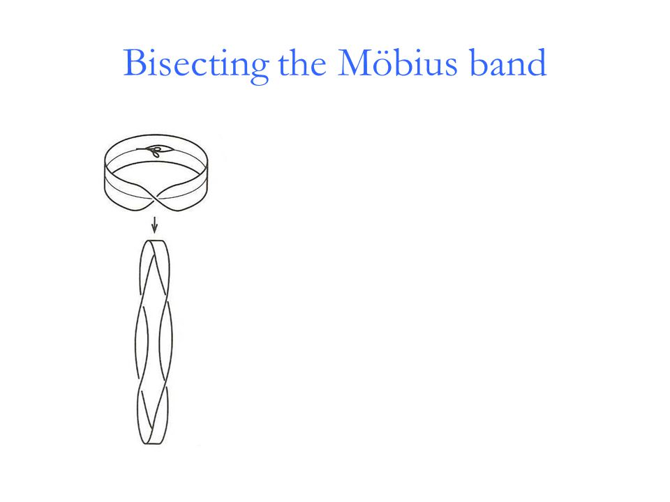 Bisecting the Möbius band