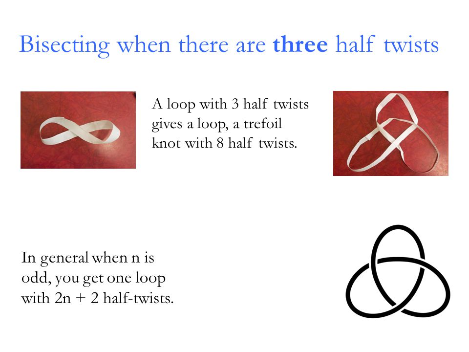 Bisecting when there are three half twists In general when n is odd, you get one loop with 2n + 2 half-twists.