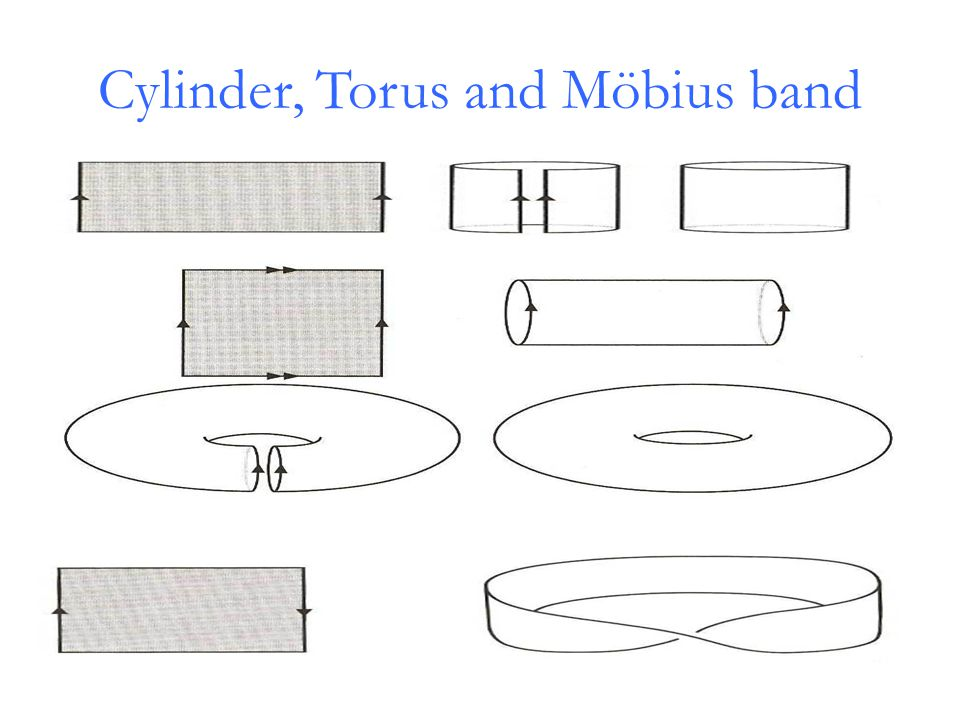 Cylinder, Torus and Möbius band