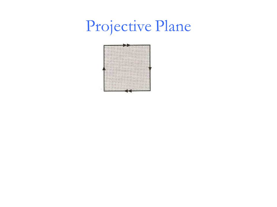 Projective Plane