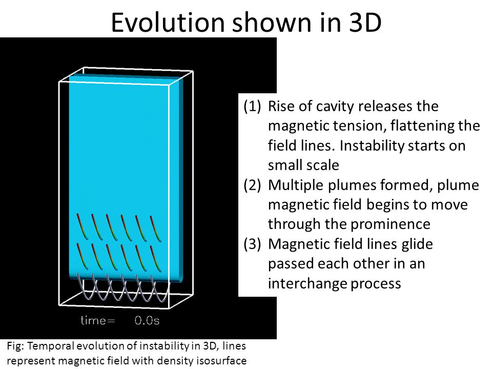 Evolution shown in 3D (1)Rise of cavity releases the magnetic tension, flattening the field lines.