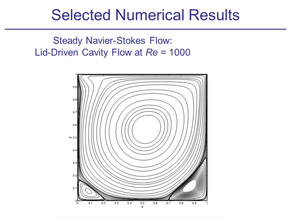 Steady Navier-Stokes Flow: Lid-Driven Cavity Flow at Re = 1000 Selected Numerical Results