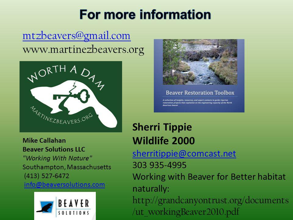 mtzbeavers@gmail.com www.martinezbeavers.org Mike Callahan Beaver Solutions LLC