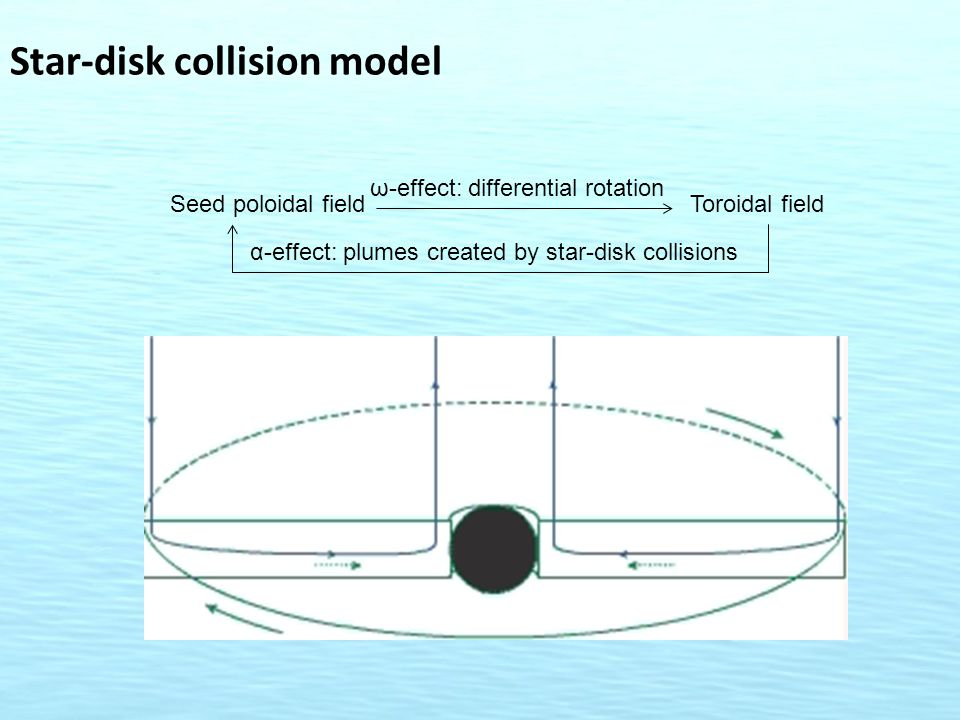 Star-disk collision model Seed poloidal field ω-effect: differential rotation Toroidal field α-effect: plumes created by star-disk collisions