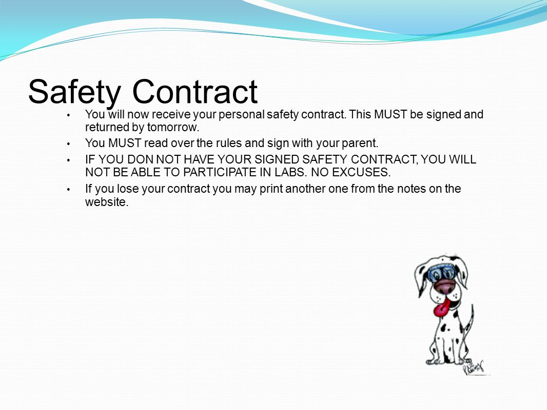 Safety Contract You will now receive your personal safety contract.