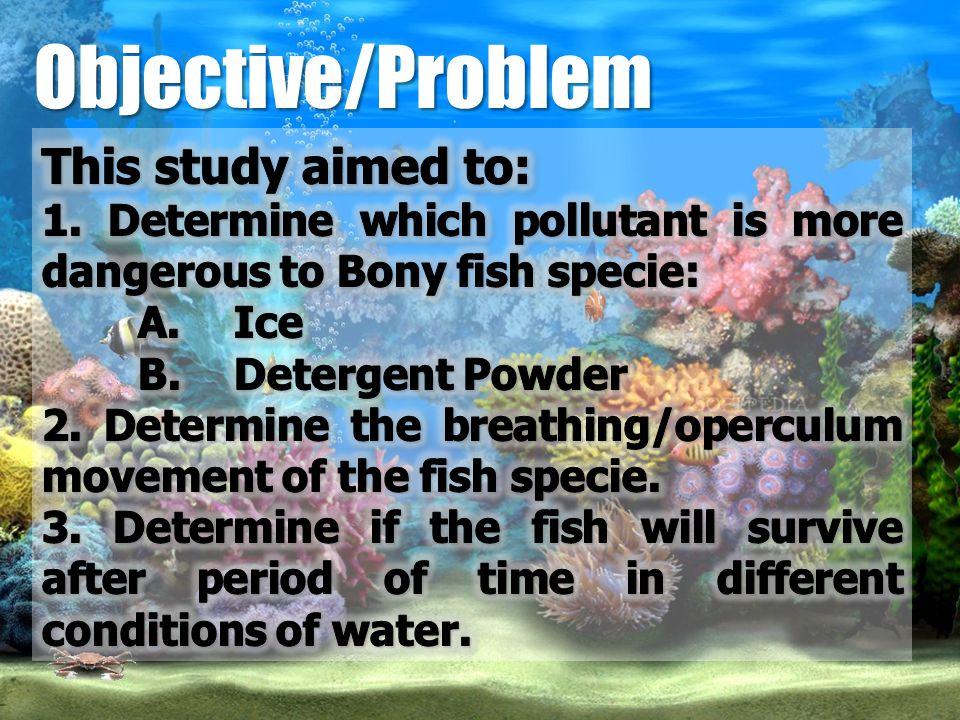 Objective/Problem