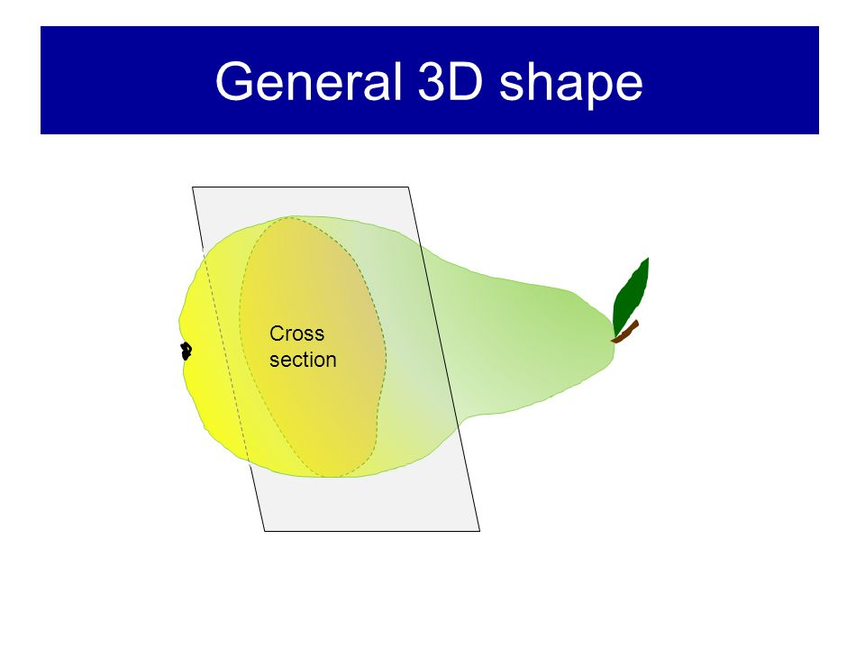 General 3D shape Cross section