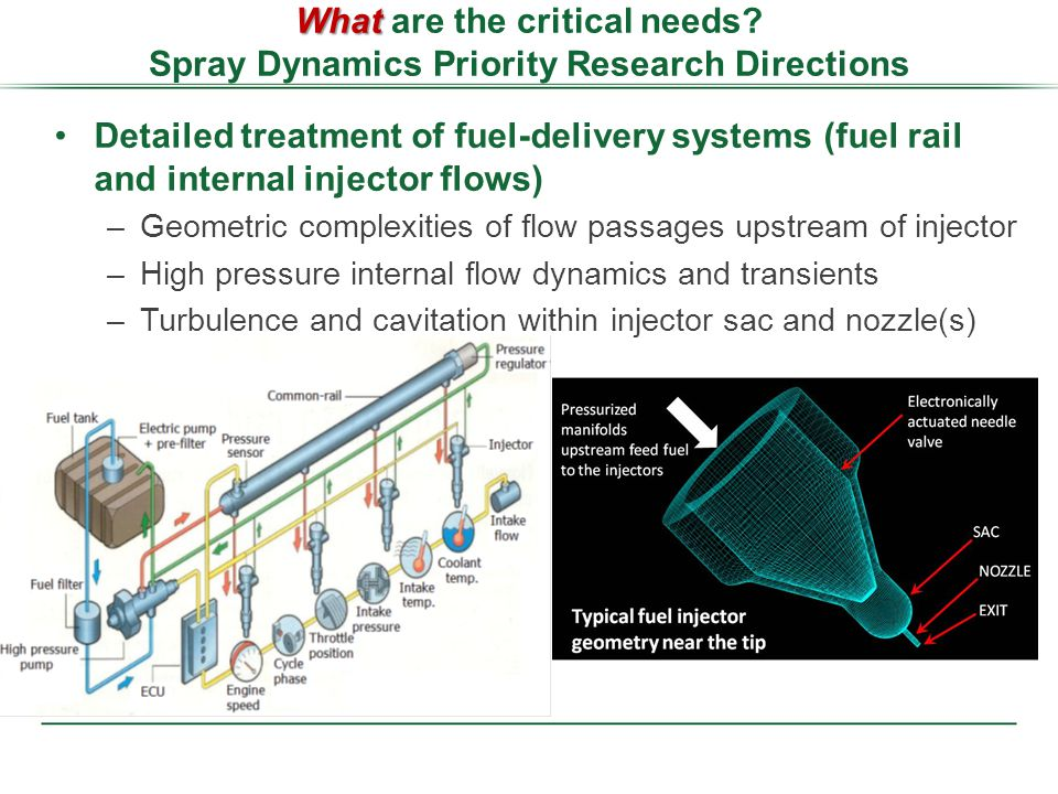 Detailed treatment of fuel-delivery systems (fuel rail and internal injector flows) –Geometric complexities of flow passages upstream of injector –High pressure internal flow dynamics and transients –Turbulence and cavitation within injector sac and nozzle(s) What What are the critical needs.