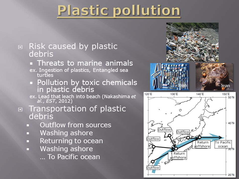 Kurochio current  Risk caused by plastic debris  Threats to marine animals ex.