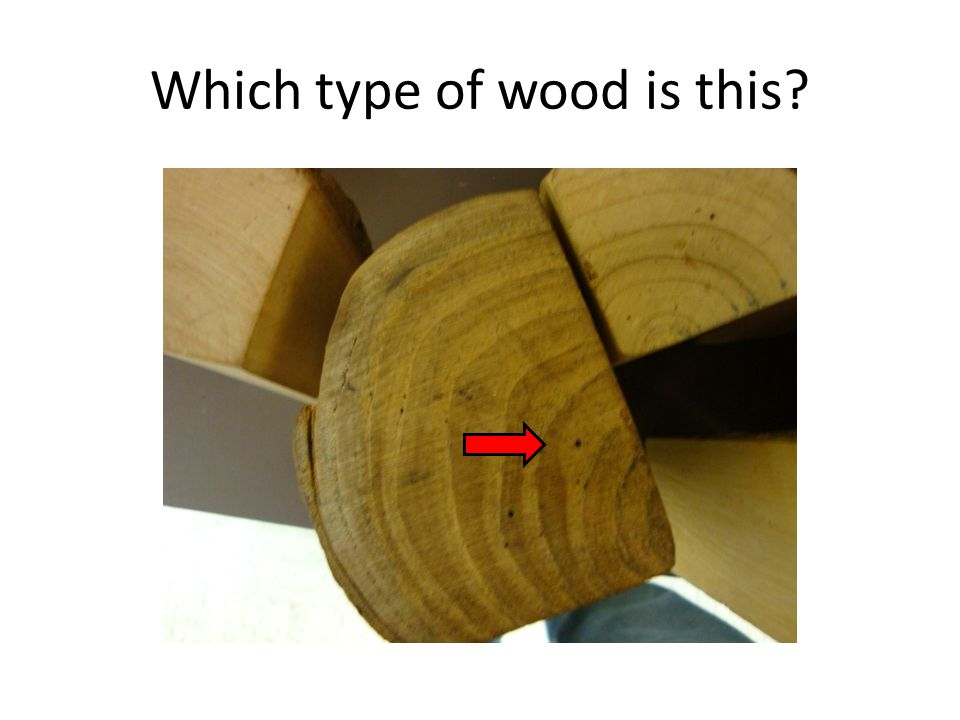 Which type of wood is this?