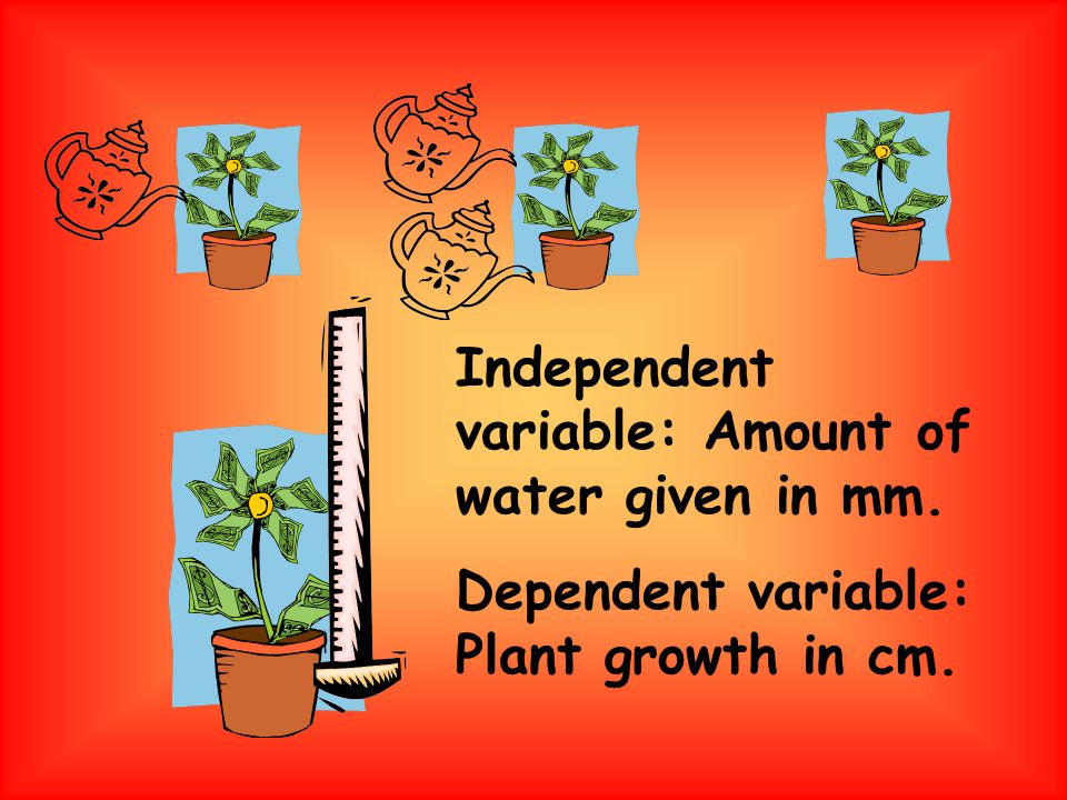 Independent variable: Amount of water given in mm. Dependent variable: Plant growth in cm.