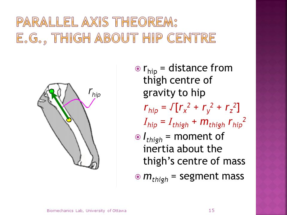  r hip = distance from thigh centre of gravity to hip r hip = √[r x 2 + r y 2 + r z 2 ] I hip = I thigh + m thigh r hip 2  I thigh = moment of inert