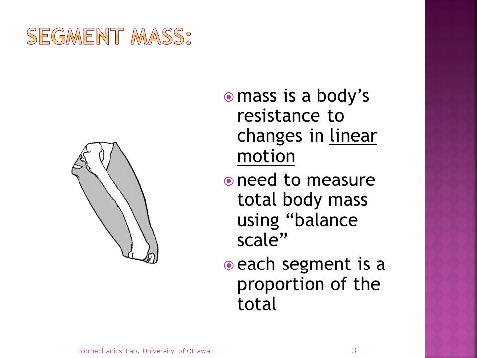  P thigh = m thigh / m total  P thigh = thigh's mass proportion  m total = total body mass  Therefore, m thigh = P thigh m total  Note, Σ P i = 1 Biomechanics Lab, University of Ottawa 4