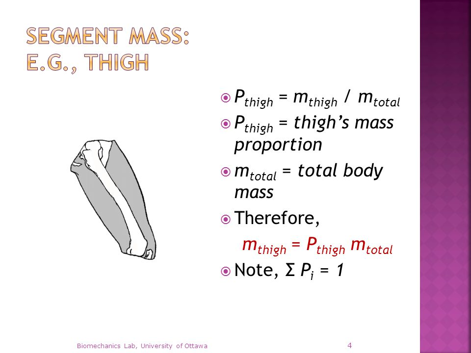  r hip = distance from thigh centre of gravity to hip r hip = √[r x 2 + r y 2 + r z 2 ] I hip = I thigh + m thigh r hip 2  I thigh = moment of inertia about the thigh's centre of mass  m thigh = segment mass Biomechanics Lab, University of Ottawa 15