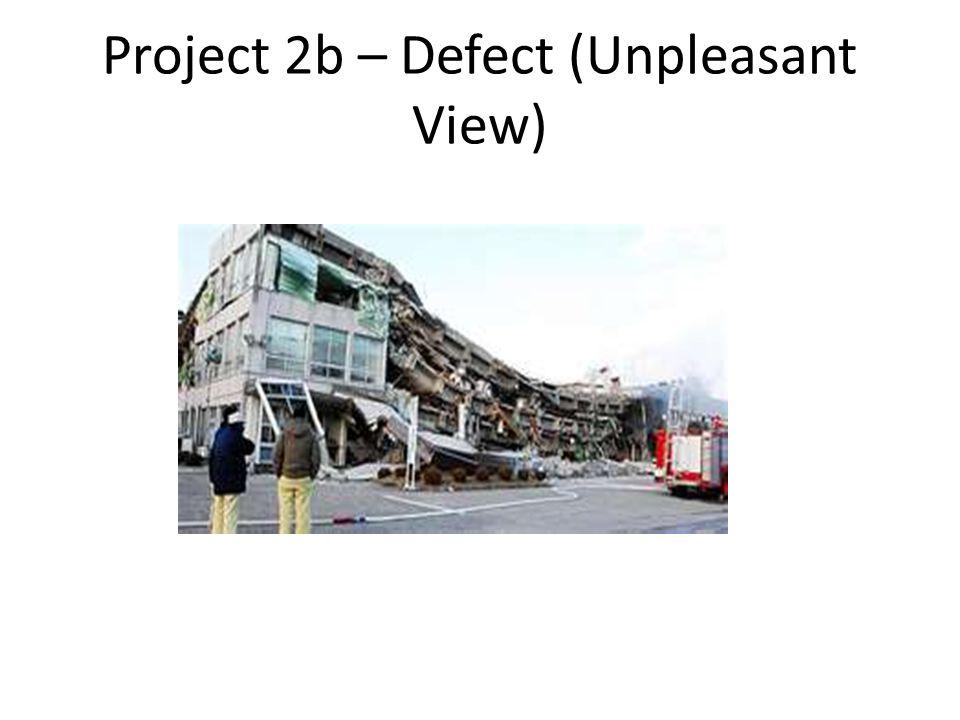 Project 2b – Defect (Unpleasant View)