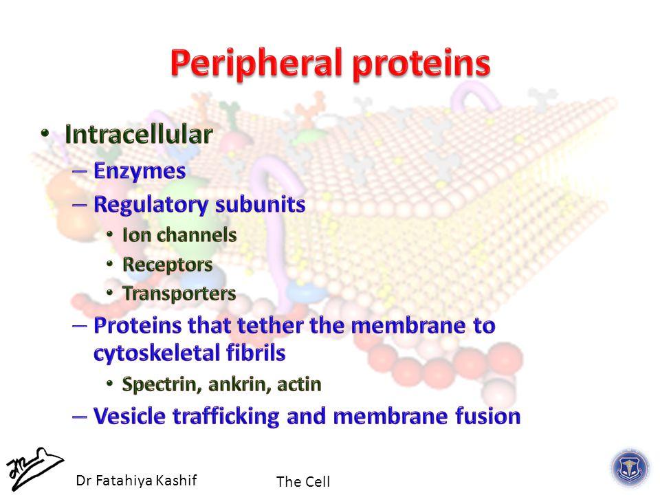 The Cell Dr Fatahiya Kashif