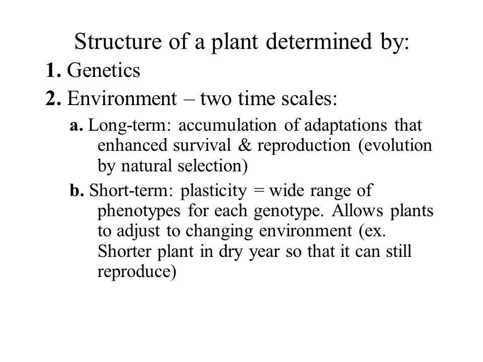 Structure of a plant determined by: 1. Genetics 2. Environment – two time scales: a. Long-term: accumulation of adaptations that enhanced survival & r